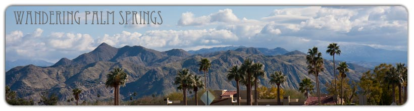 wandering palm springs logo